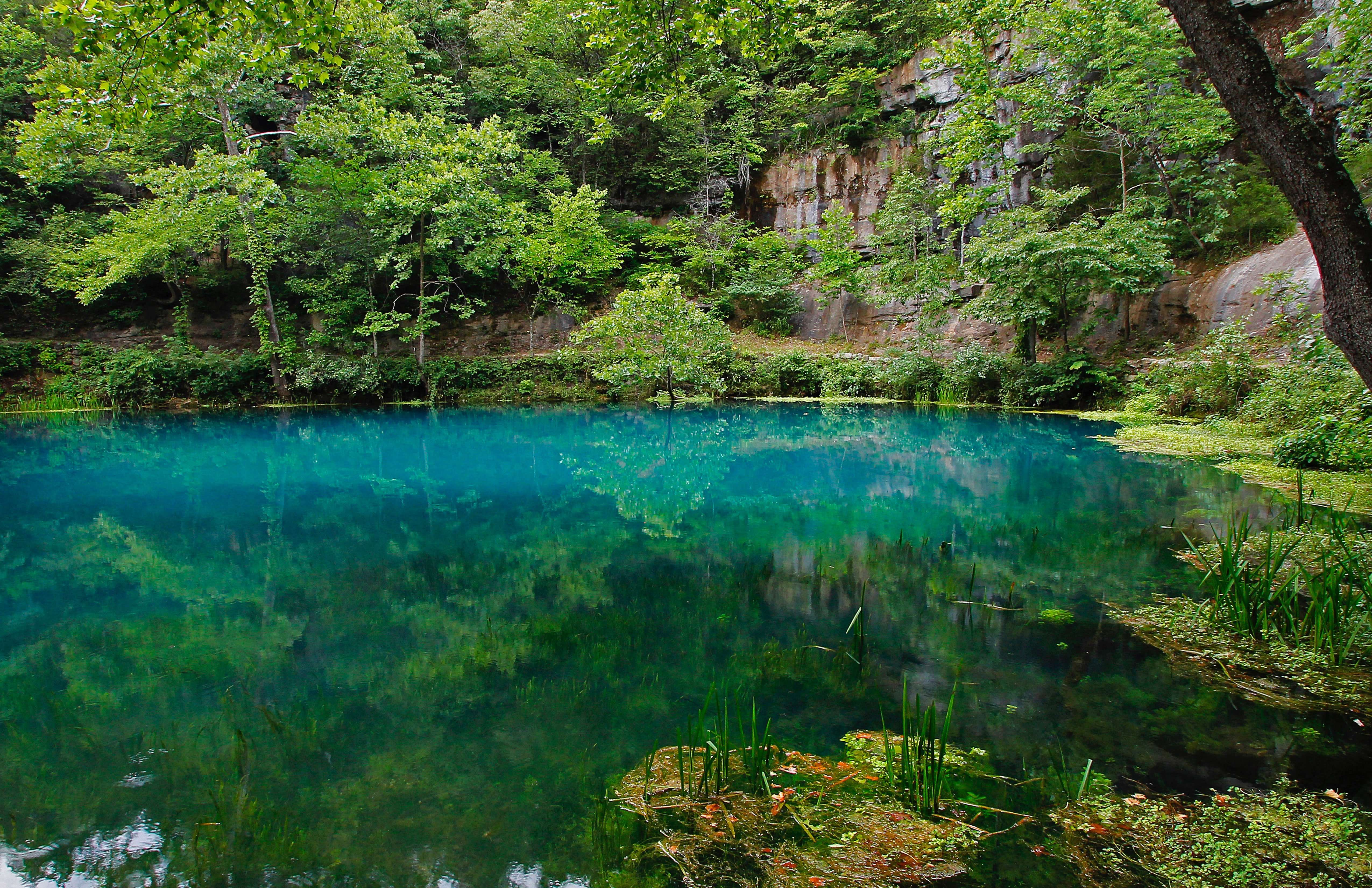 Alley Spring's pool is a stunning aquamarine filled with diverse life - a Mill House with gift shop & activities