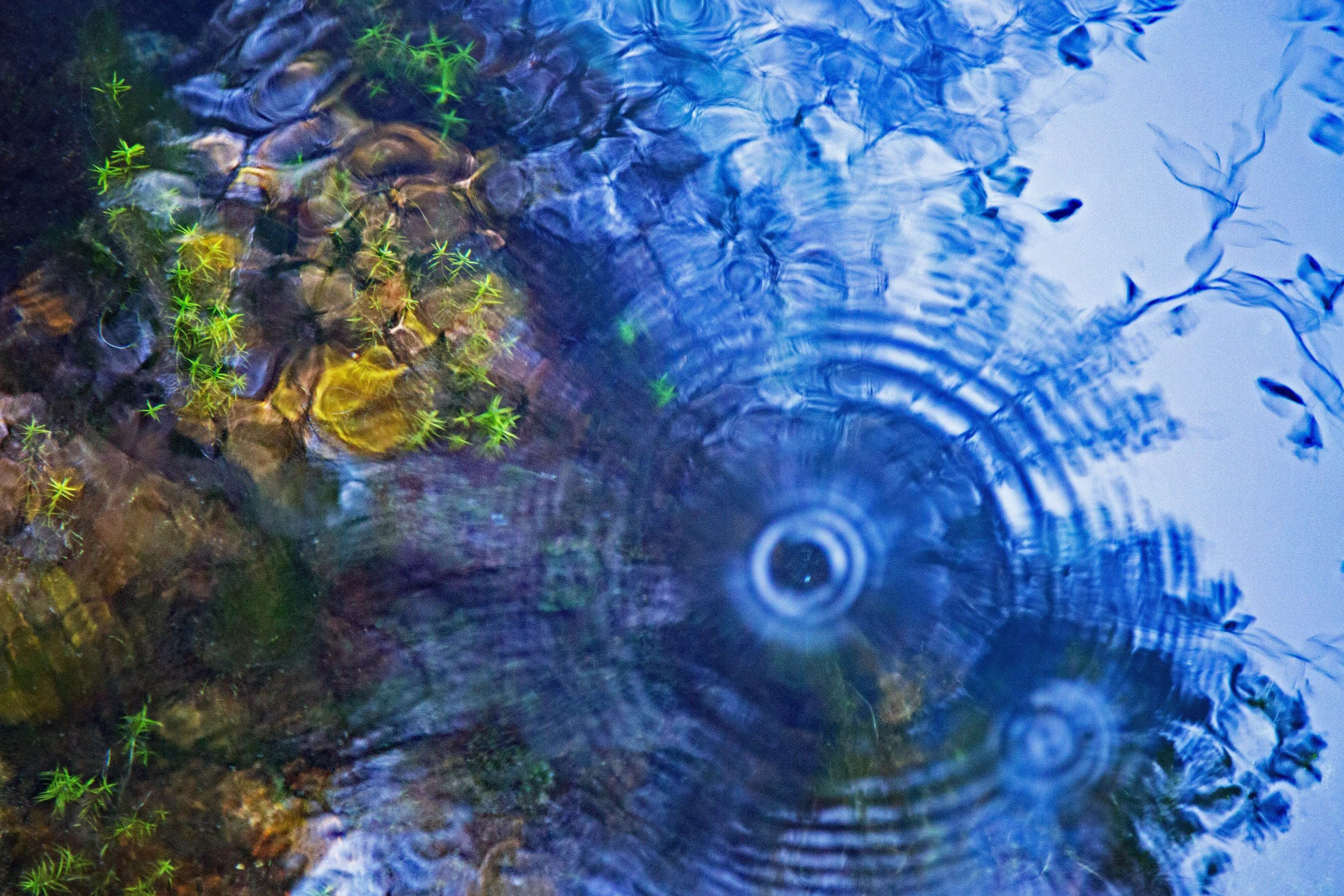 Fragile and powerful, Blue Spring is protected so we can stand on a platform and enjoy its spirit.. its art