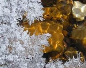 Ice Formations & Sunlight Art on Stream