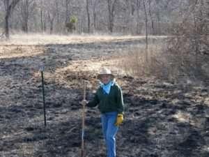 Burn Around Trees Ozark Stream Photography